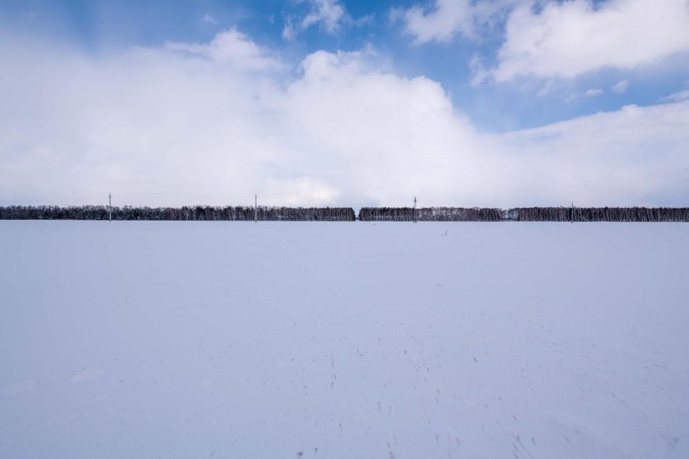 冬の会社までの道中