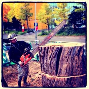 樹齢100年の大木 -
