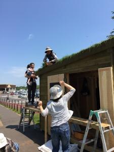 屋根に芝をあげて、ロールを広げていきます。