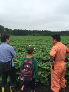 広い畑の前で小豆に、あんこについて語る男達。
