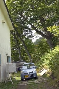 家の裏のミズナラ。とても大きいです。その向こうに沢が流れています。  Photo by Mihoko Tsujita