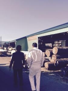 二日目。鮭箱の材料はここから。丸善木材さんにて。