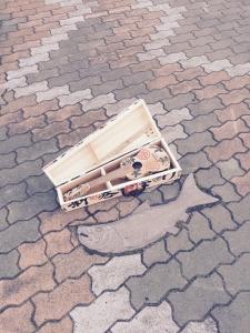 釧路の繁華街で発見したシャケインターロッキング!
