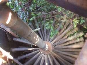 2008年 ダテーラ農園視察の際、収穫にのって内部を撮影! -
