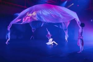 いよいよ来週末! Dance & Multitude Arts「Water Flow」 - 2016/9/16-18さて、いよいよ来週末です。素晴らしい景色が見えるはずです。ぜひ、ご観劇ください!チケットは樽前arty+へのメッセージでもお取り置きできますので、お気軽に。▼▼演目:Dance & Multitude Arts「Water Flow」▼スケジュール:平成 28年9月16,17,18日  5回公演   16日 (金) 午後7時開演17日 (土) 午後3時開演・午後7時開演18日 (日) 午後1時開演・午後5時開演(開場は、各開演の30分前)▼▼会場:生活支援型文化施設コンカリーニョ  〒063-0841 北海道札幌市西区八軒1条西1-2   TEL011-615-4859http://www.concarino.or.jp ▼▼入場料::4200円(当日4500円)コンカリーニョメルマガ会員 :3,700円▼▼チケット販売・お問い合わせ:大丸プレイガイド 011-221-3900教文プレイガイド 011-271-3355 清水フミヒトofficial website http://www.shimizufumihito.com▼ ▼作品内容:身近な「水」。滲み出てくる一滴の雫。一粒ずつの雫がまたひとつまたひとつ出会い、結びつき、徐々に流れが繋がっていく。合流そして分流。そして雫は,雪となり花となる。人生の機微、無限なようで限りある時間を作品に重ねていく。ダンス、バトン、一輪車、多種多様な視点の表現から「生きる喜び」、豊かな水の持つ多彩な変化と可能性のイメージから「命の輝き」、変化に富んだ流れのイメージから「命の繫がり」、そして「命の意味」を表現していきます。▼▼スタッフ・出演者:構成・演出・振付:清水フミヒト音楽:小西徹郎舞台監督:坂本由希子舞台照明:高橋正和舞台音響:大江芳樹衣装:本柳里美 岩戸洋一舞台美術:藤沢レオ 宣伝美術:田中康晃宣伝題字:清水直人宣伝写真:池上直哉記録映像:ビデオ・ザ・キッド記録写真:小牧寿里▼▼出演:髙橋あすか (バトントワラー)松田良平 (ユニサイクリスト)小西徹郎 (トランペッター)▼出演ダンサー:上原由美子、川原史十巳、鎌田浩子、吉田裕美、黒田美幸、 桝谷まい子、菊地優花、菊地愛佳、柴田詠子、北村櫻、笹島愛結羽、佐竹栞音、丹治碧海、西園美彌、矢萩もえみ、堀尾健二、山口崇志、西岡翼、桝谷博子