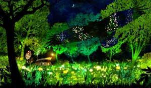 """ご来場ありがとうございました! - 「飛生芸術祭 2012」が無事に終了致しました。ご来場頂いた方々、ご協賛ご協力を頂いた多くのサポーターの方々ありがとうございました!今後も続く""""森の神話""""をお楽しみに!"""