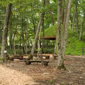 木木木人 - 森人飛生の森づくりプロジェクトに集う仲間達http://www.tobiu.com/mori