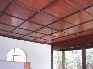 内部天井 Ceiling