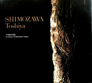 Books/Art Works of SHIMOZAWA Toshiya